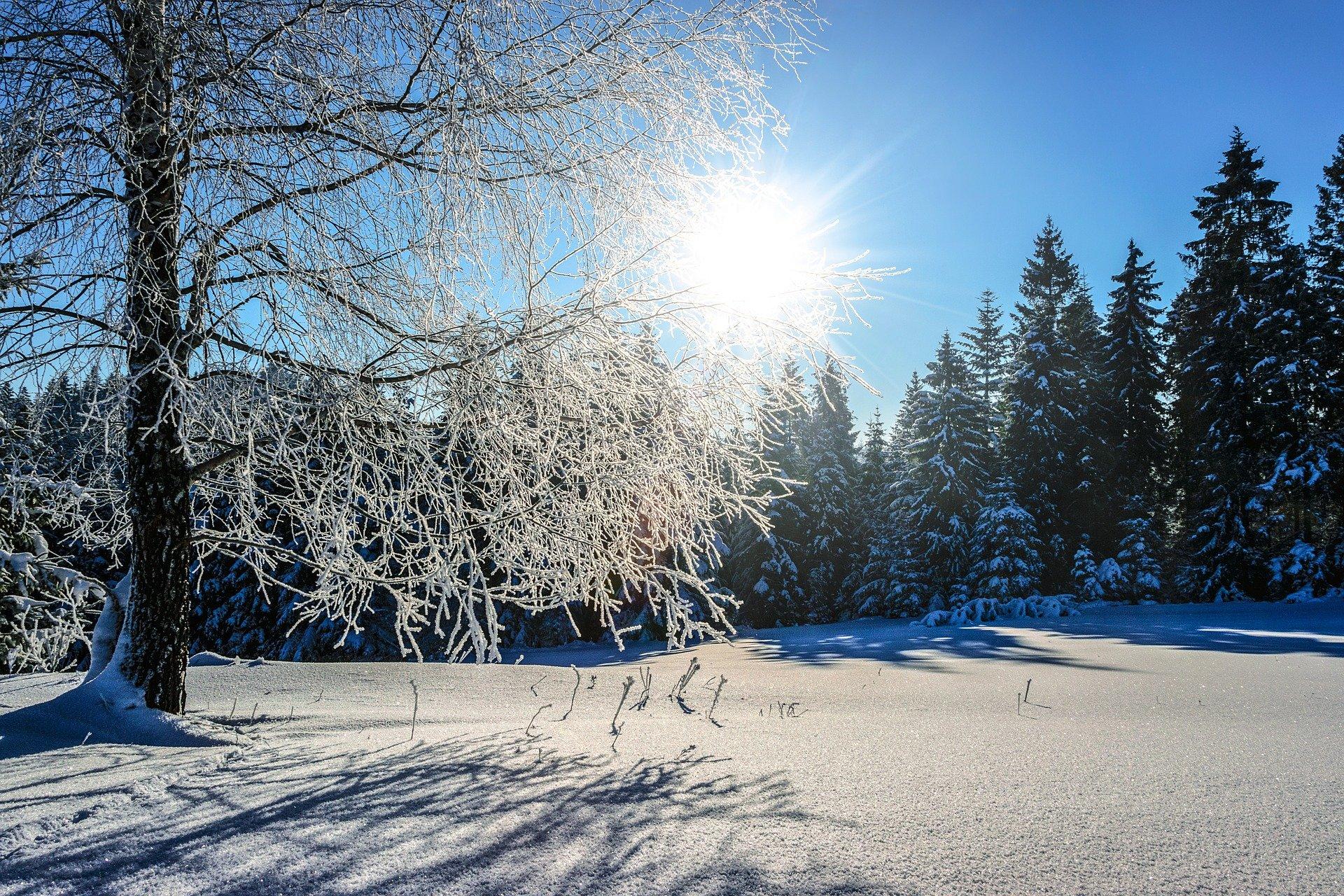 snow-3157317_1920
