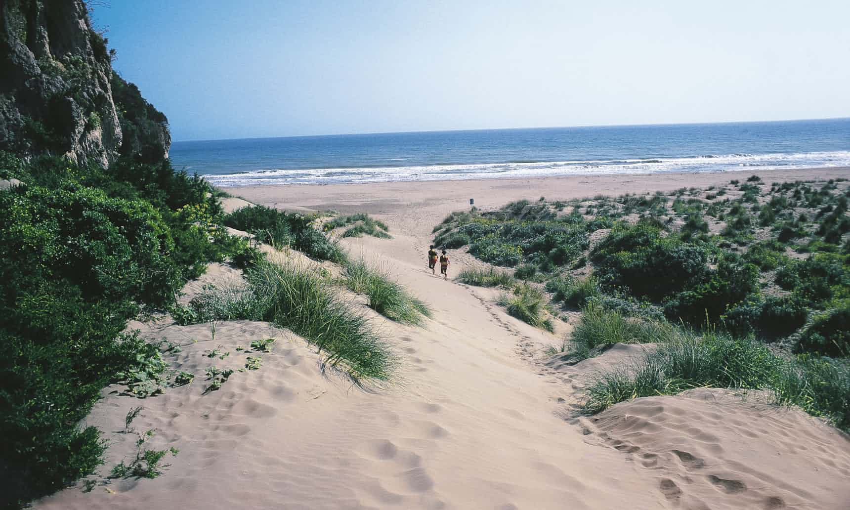 Maremma_dunes