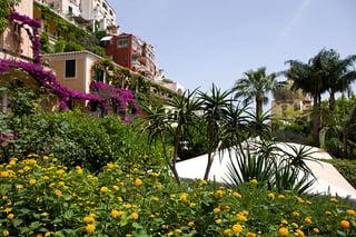 Garden_Palazzo_Murat