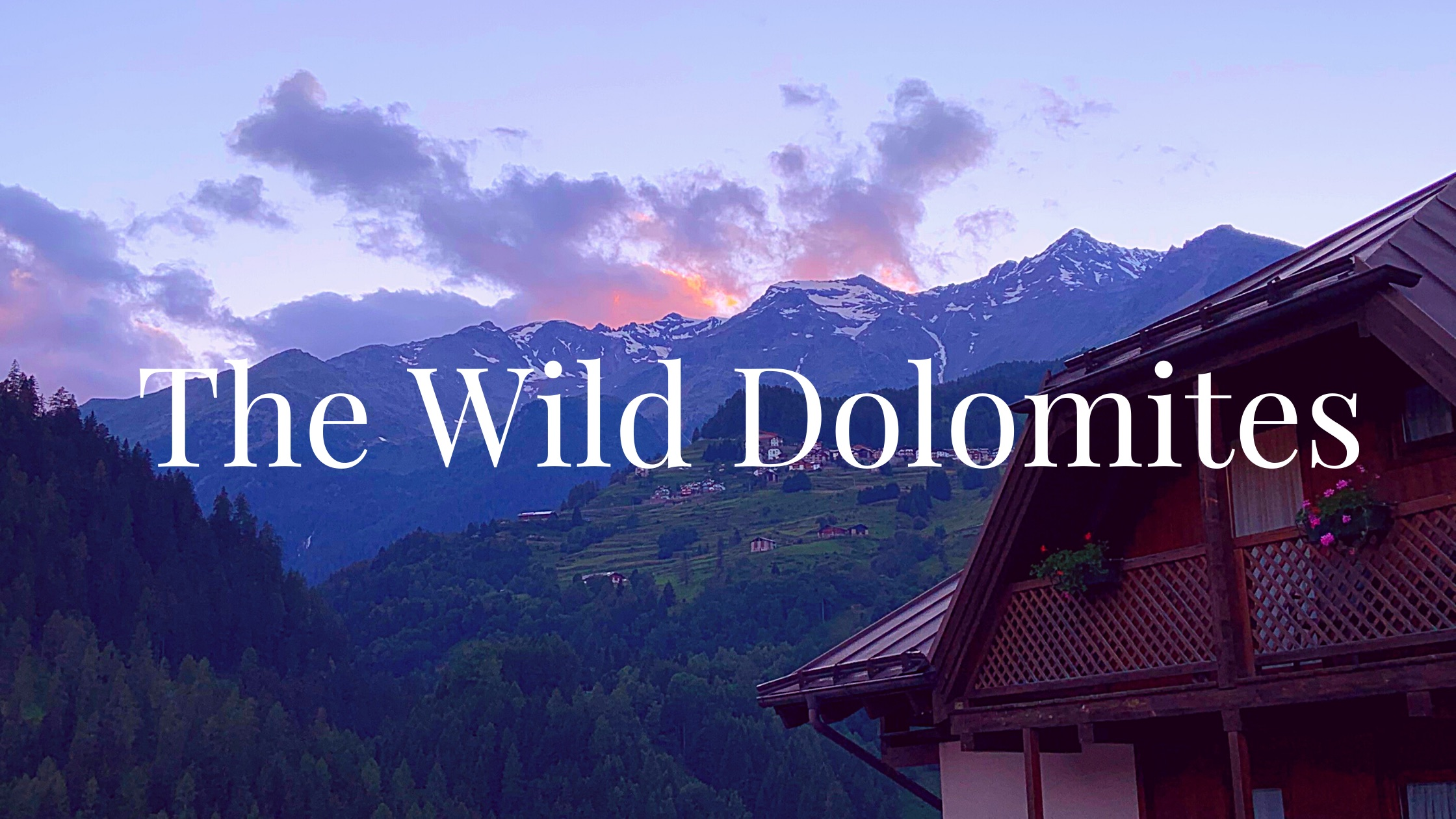 Wild Dolomites Blog