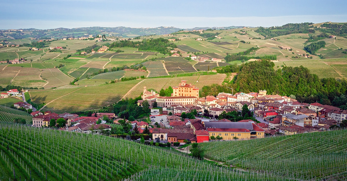 barolo-101-wine-guide-social