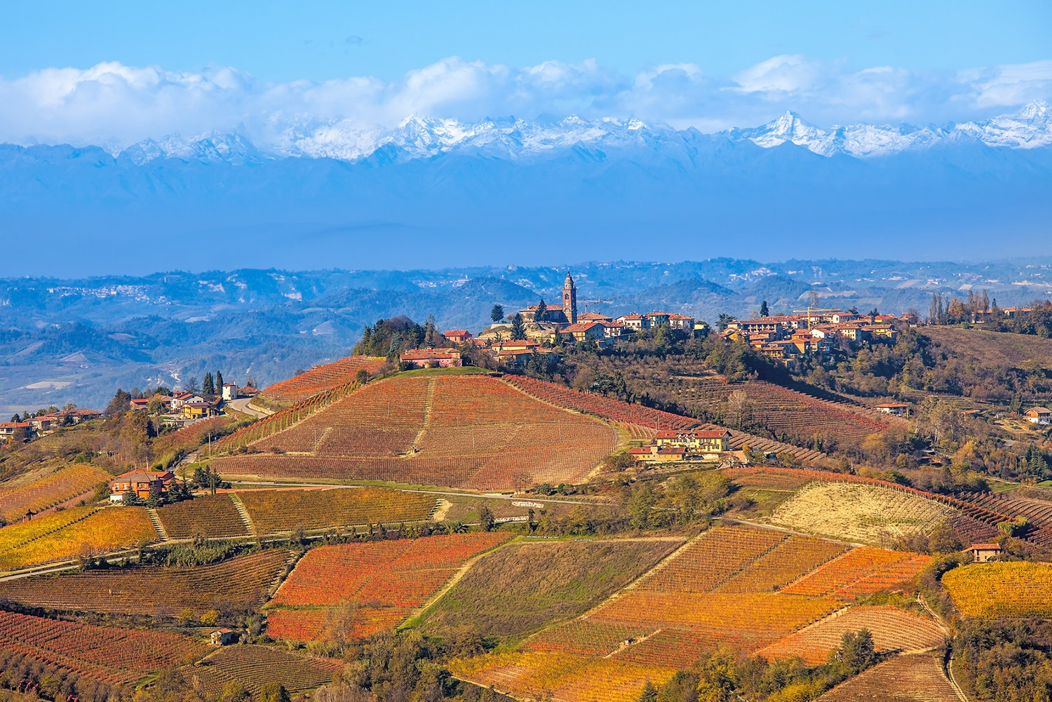 Best-of-Piedmont-12.jpg