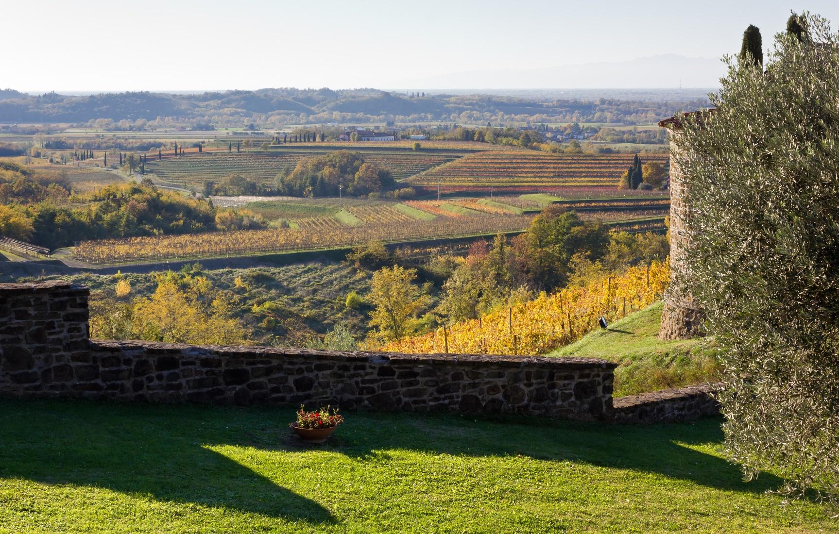 Friuli landscape.jpg