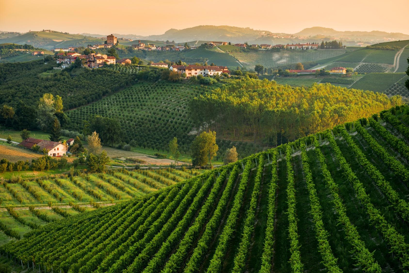 Piedmont_Tourissimo_14.jpg