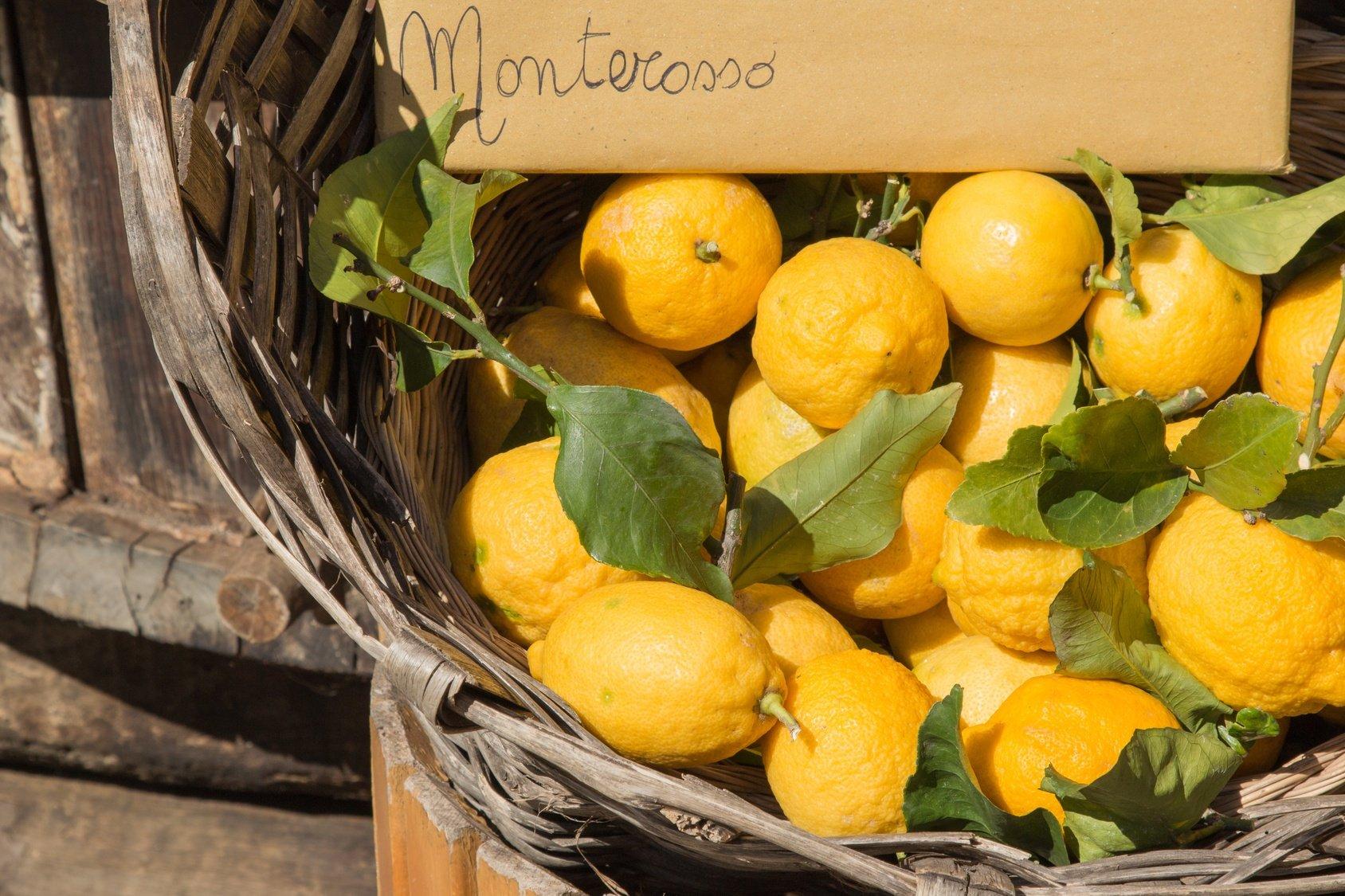 limoni_cinque_terre.jpg